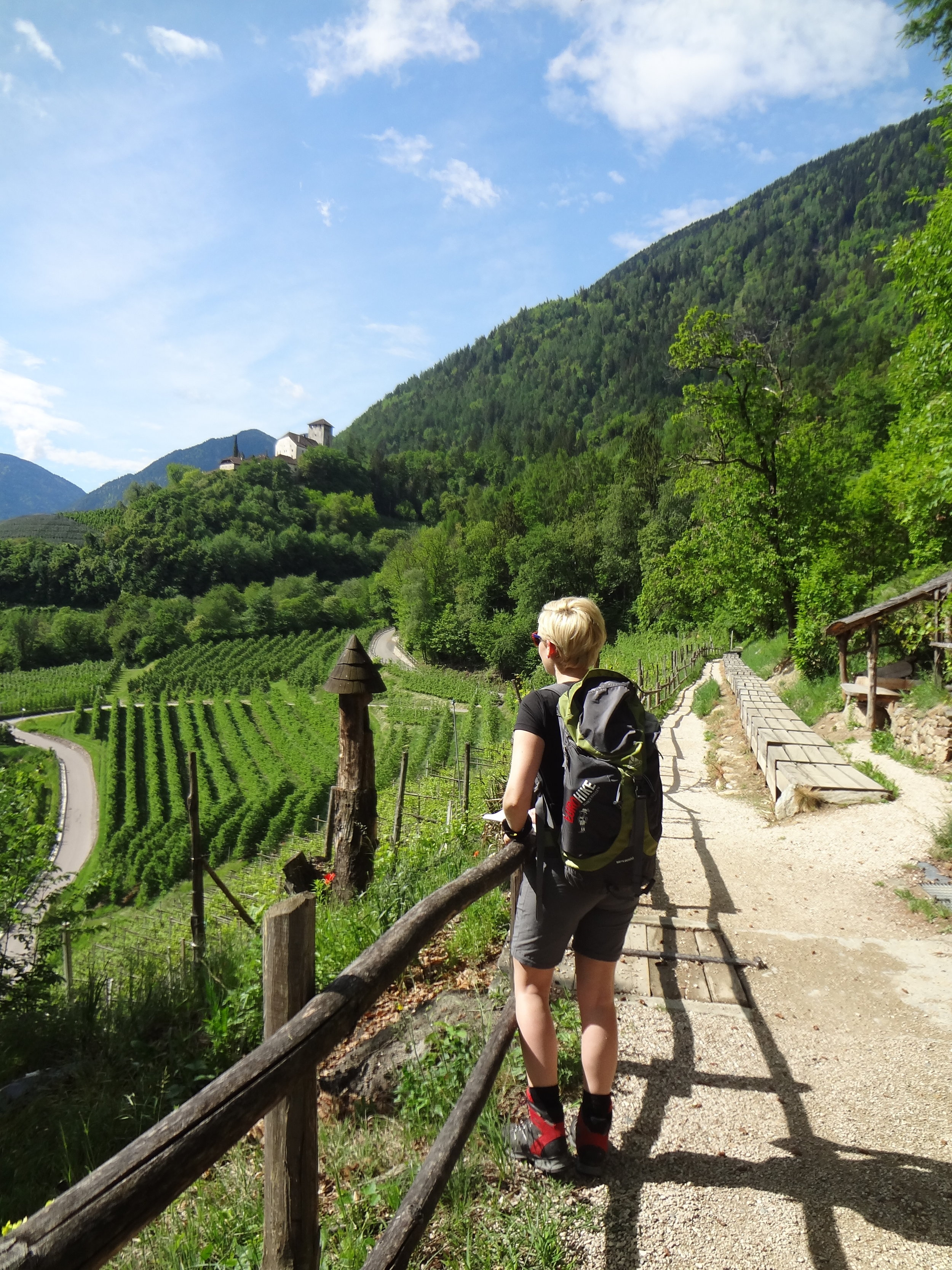 Meran-Gardasee_Weingarten_Wanderer.jpg
