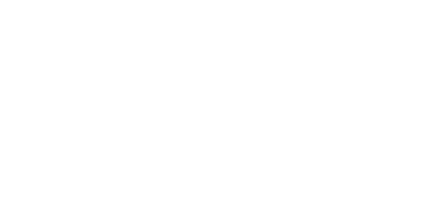 SW Logo 2017 Black copy.png