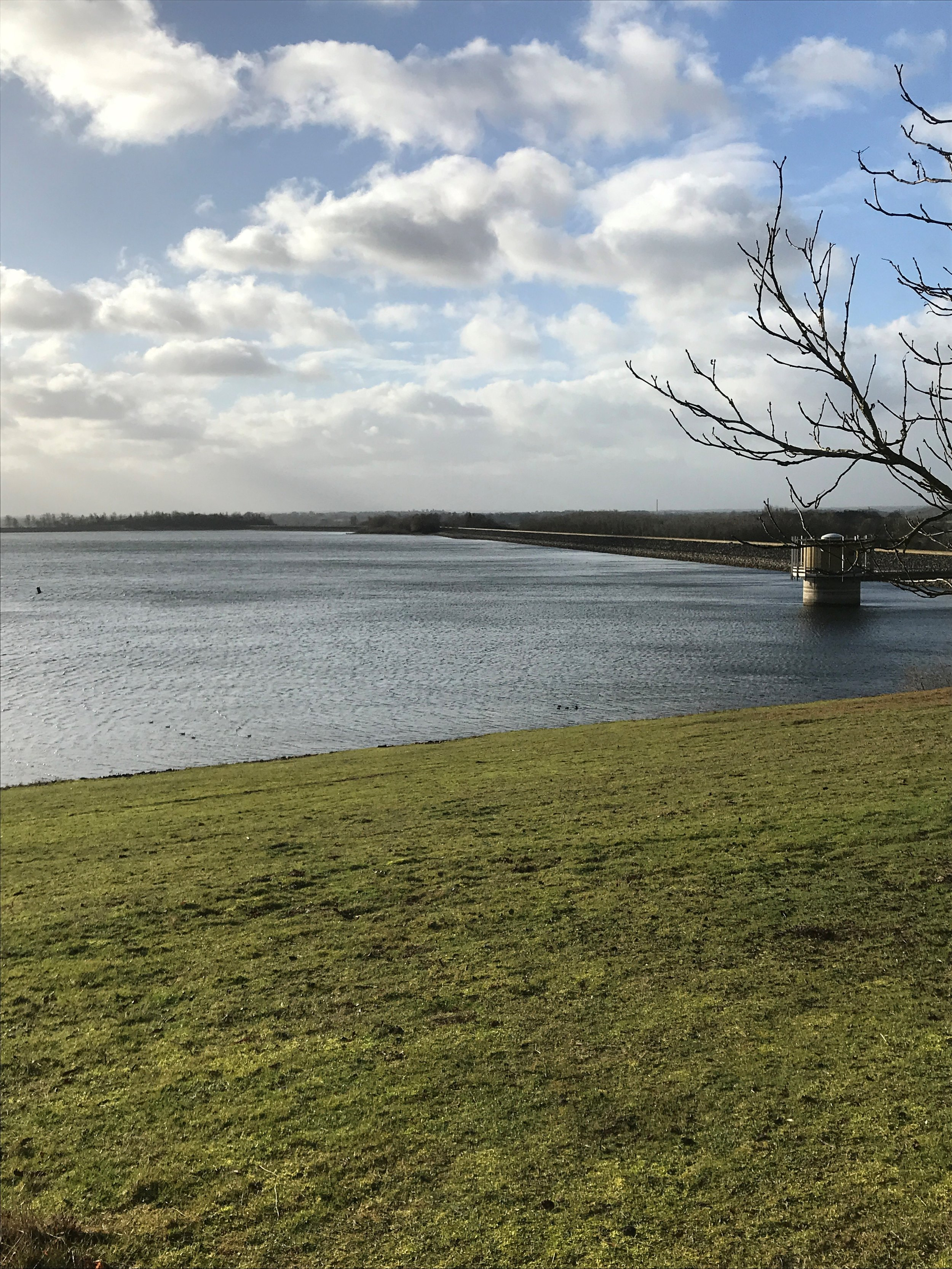 Pat Hipkiss Jan 2019 image 5 Draycote Water.jpg