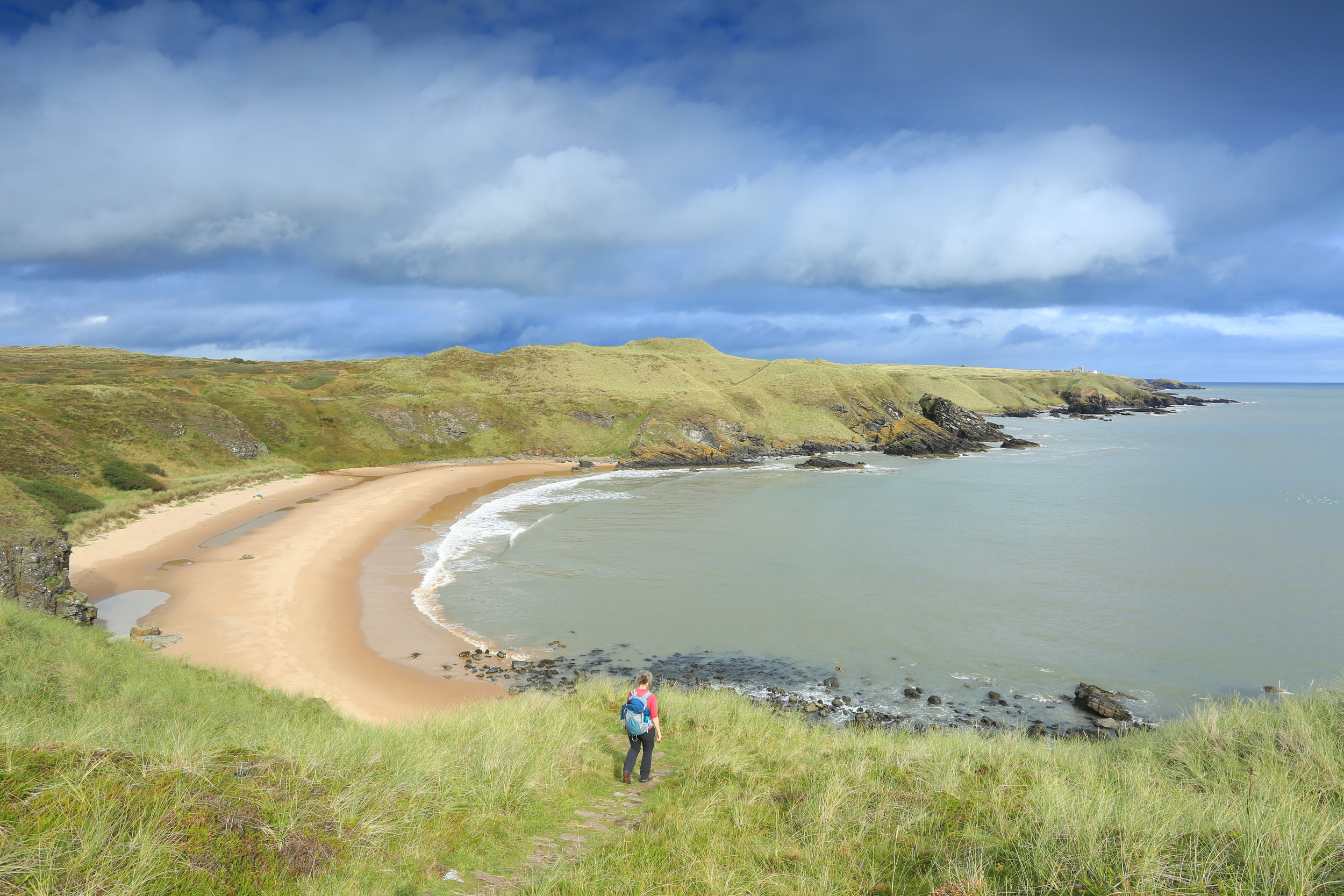 275 Hackley Bay Forvie NNR South of Little ColliestonEast Scotland.jpg