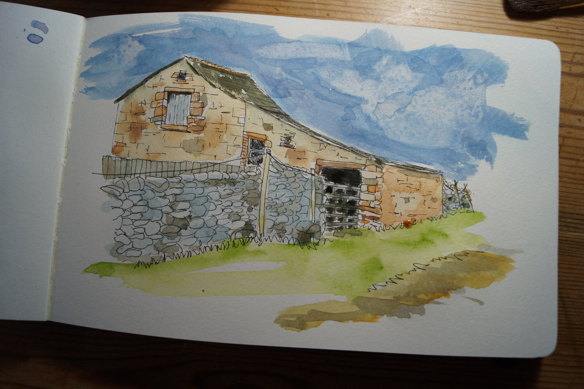 We do a lot of our walks in the Dales where I am SPOILT for choice - so many barns, views and stone walls to choose from - so thought I'd share a quick watercolour and ink of a barn on the Settle/Long Preston parish border - Hawthorn Spellweaver
