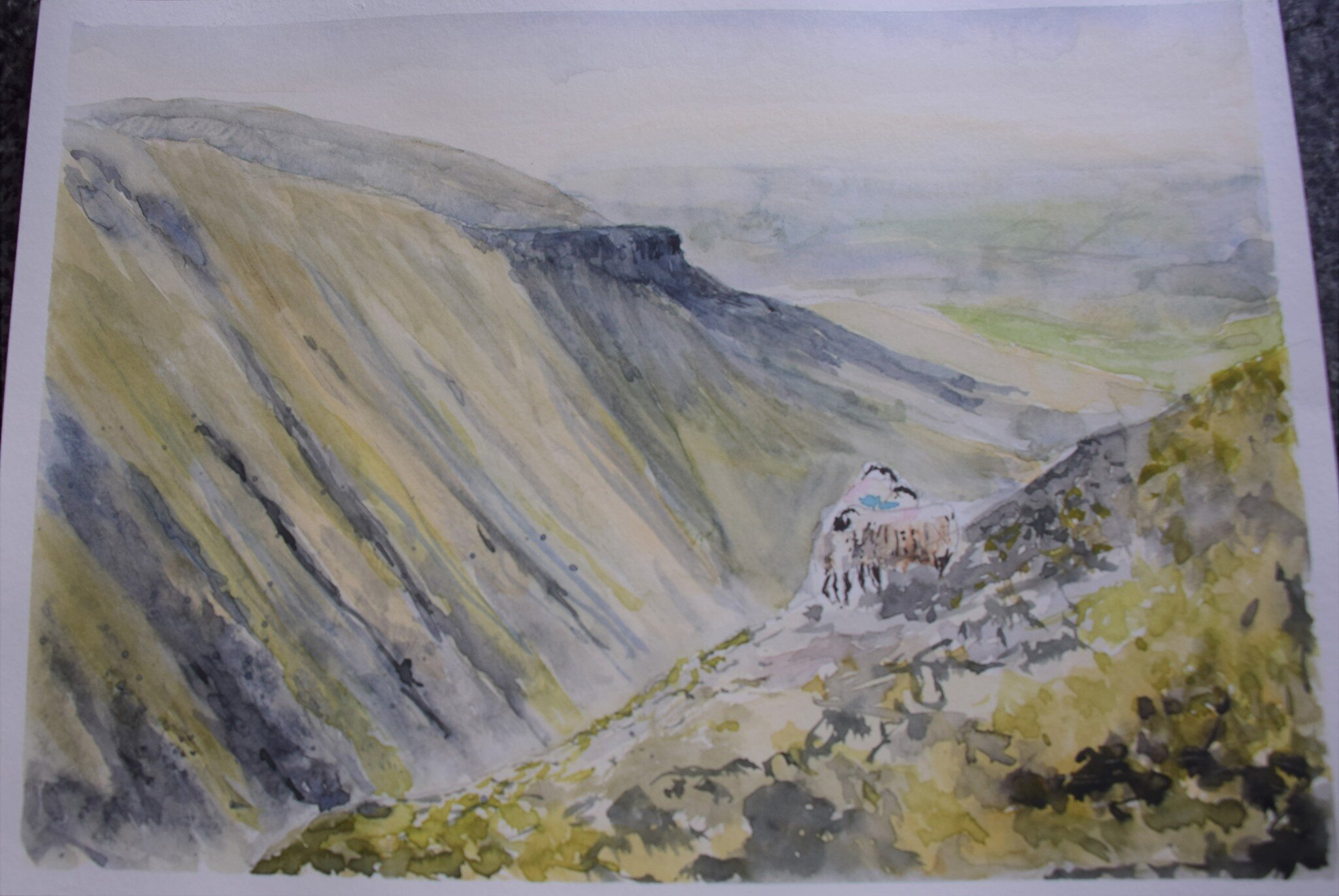 High Cup - I'm very new at watercolour, but I thought I might make an effort - it's such a stunning place. Can't say I've done it justice but the painting is more fun being on here than stuck in the dark in a cardboard folder! - Frances Ipson