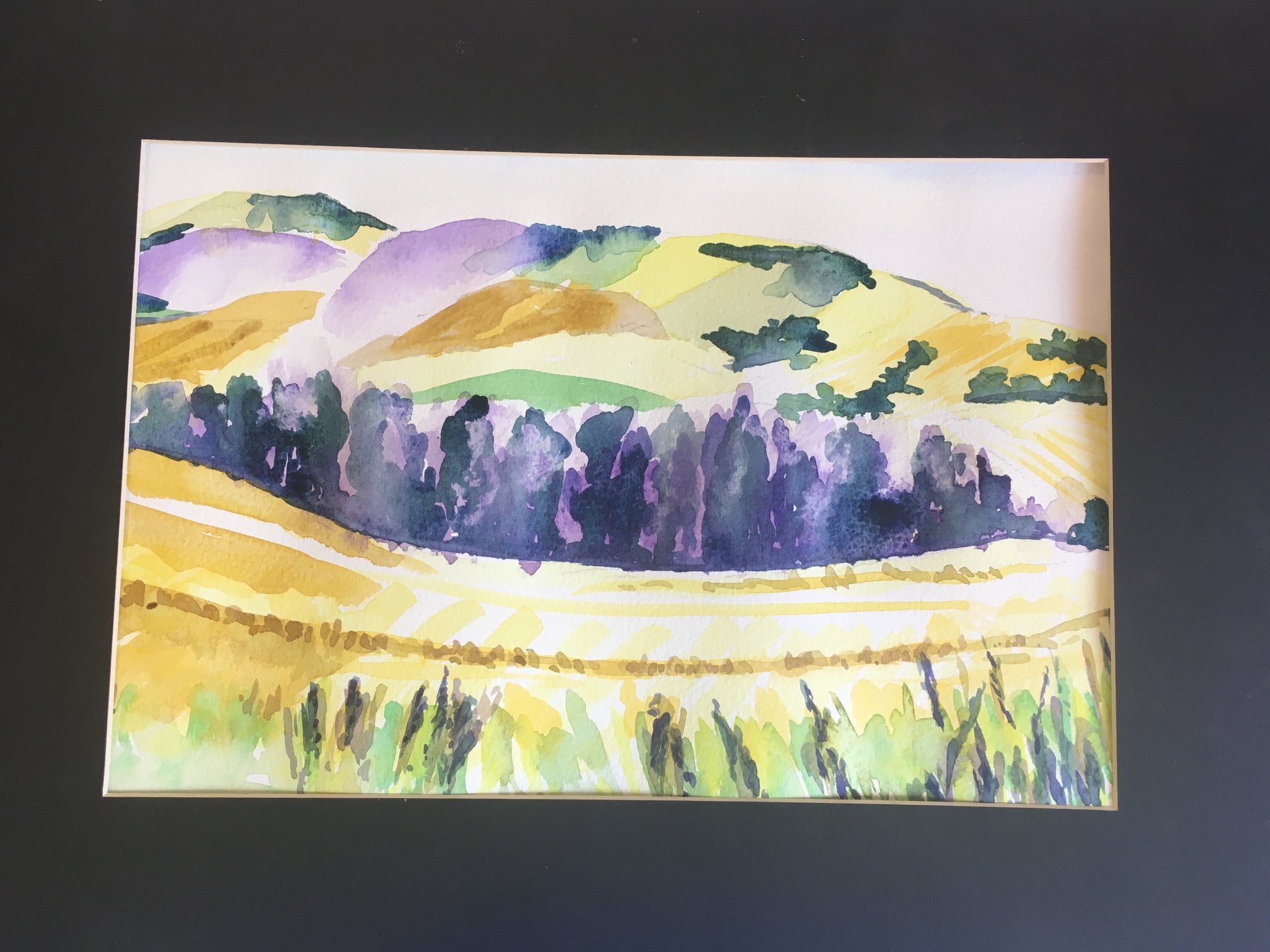 Lincolnshire Wolds painted in water colour, one of the most amazing views we found the other week while out and about exploring - Emma Yardley