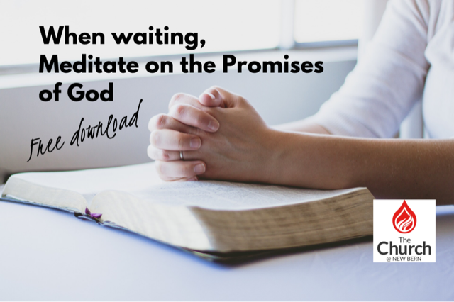 blog - meditating on the promises.png