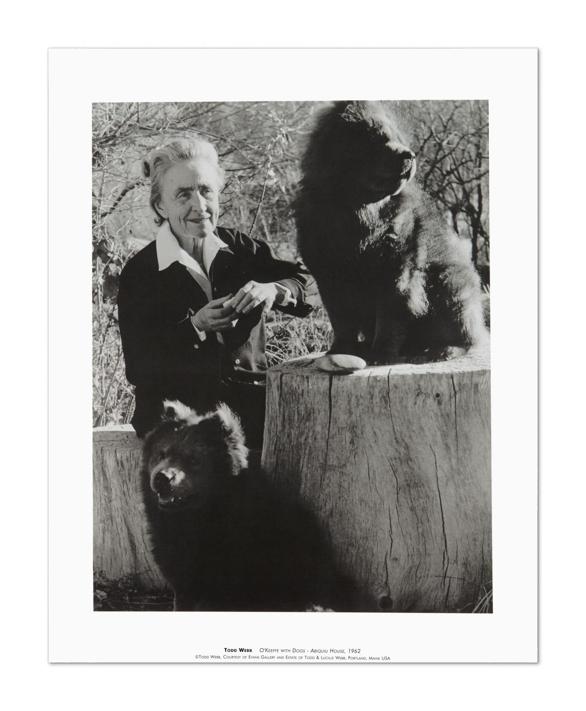 """""""O'Keeffe with Dogs"""", Todd Webb, Abiquiu House, 1962"""