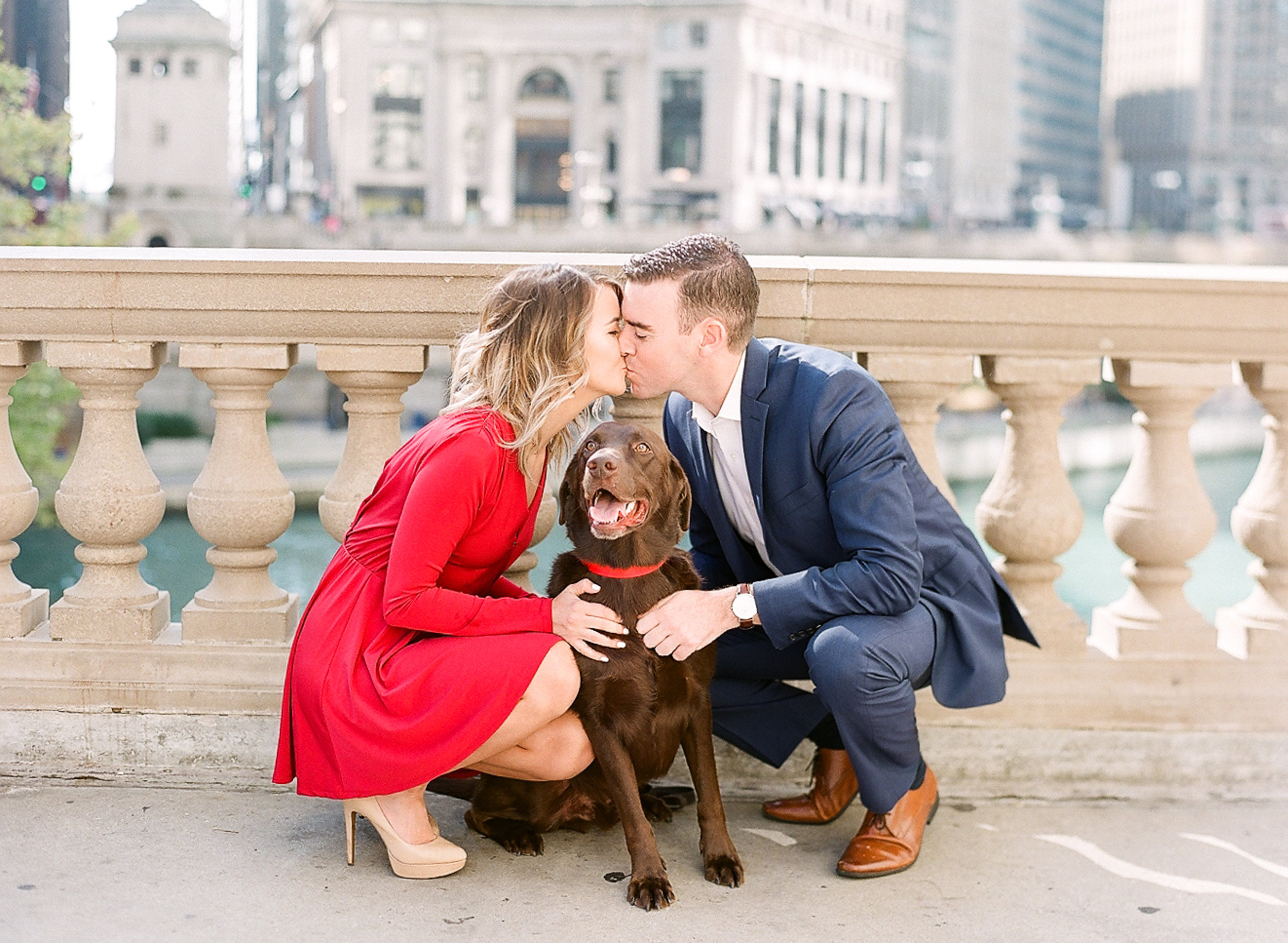 Bonphotage Chicago Fine Art Pet and Family Photography