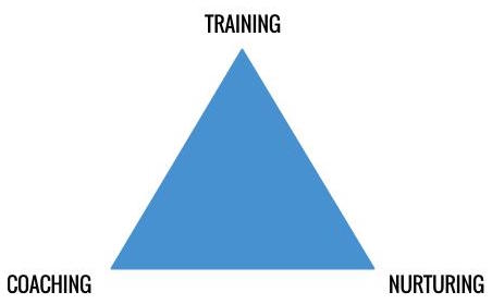 Its_Not_Just_About_Training—Its_Coaching__Mentoring.jpg