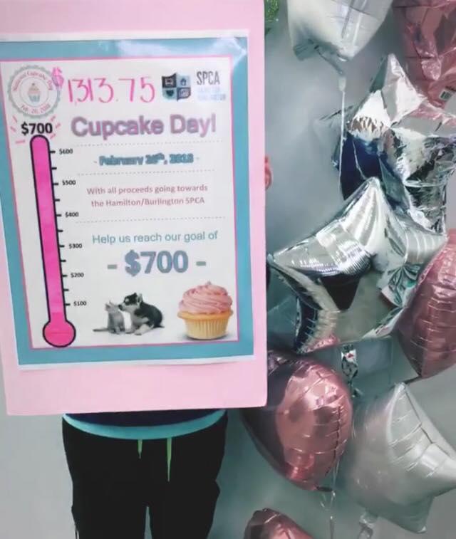 cupcakes1.jpg