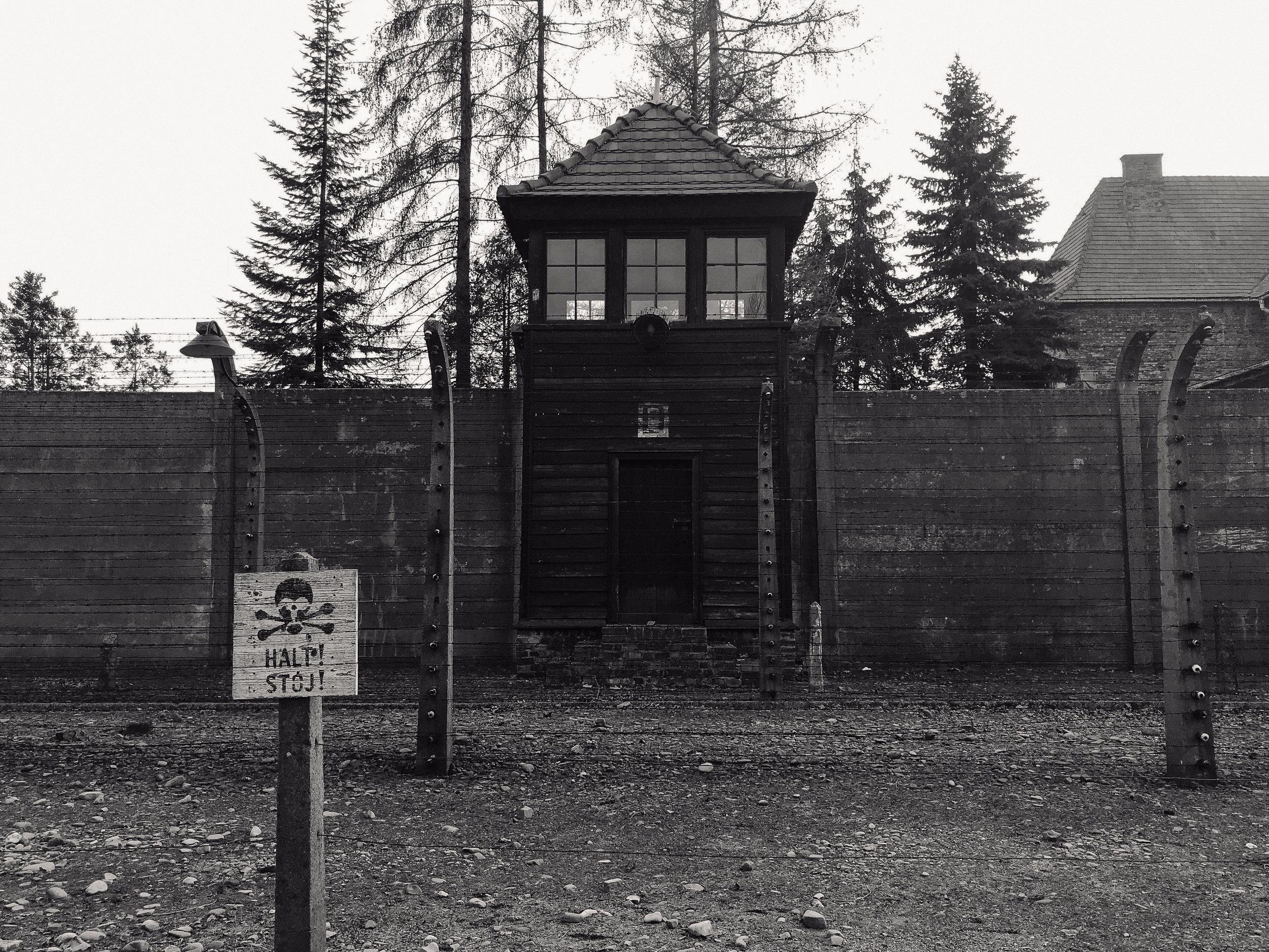 Pictured above: Auschwitz. Photo courtesy of Jez Sabaduquia