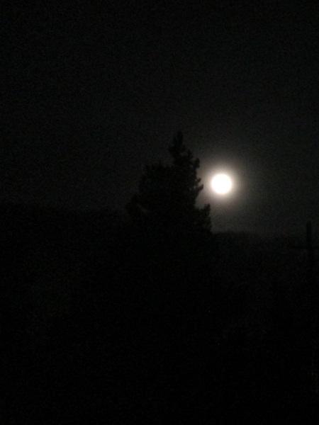 180129 full moon.JPG