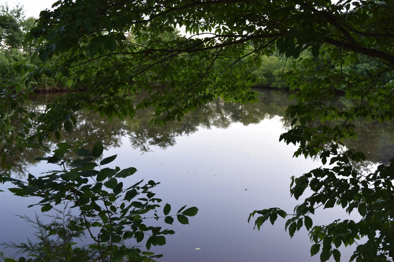 03 Lake.JPG