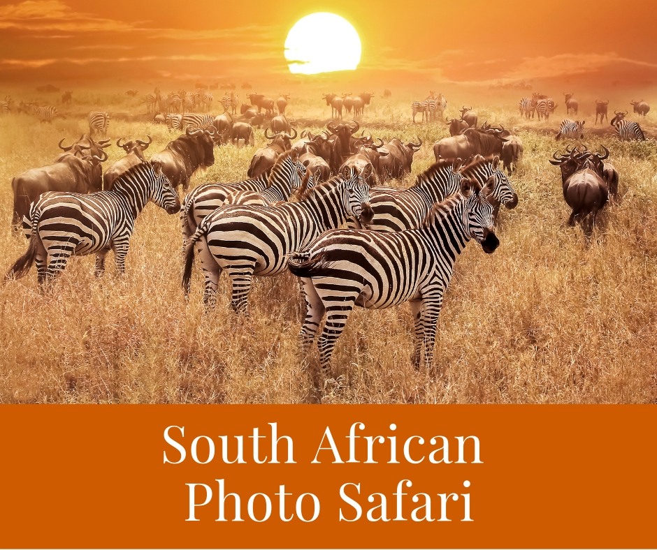 South African Photo Safari - Up to 5 couples will enjoy a week in the 5 thousand sq. ft., 5-bedroom, Datura Villa located on 9 acres of private property overlooking the aquamarine waters below. Comes with a private chef and full staff to meet your every need.Donor ~ Evan Cole