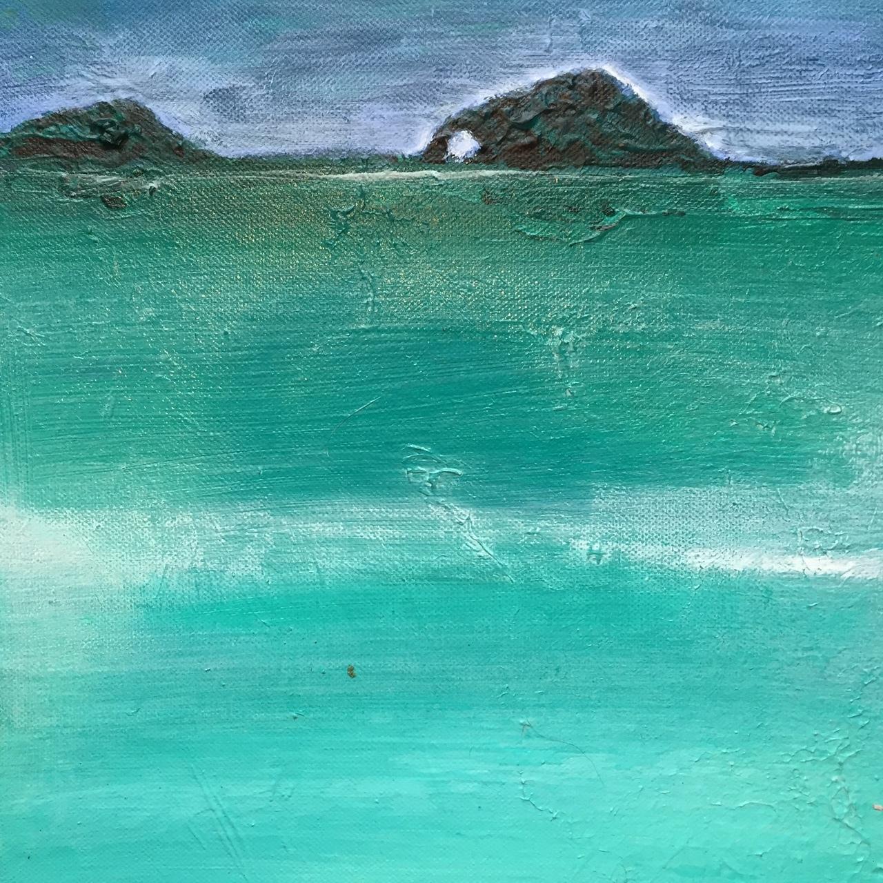 Turquoise Turtle Beach