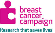 Breast-Cancer-Campaign.jpg