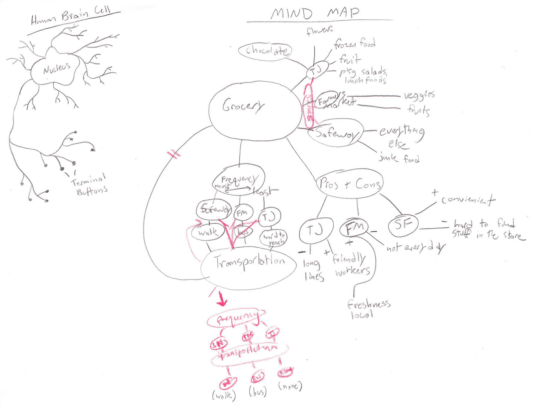 Collaborative mindmapping for a ridesharing app.