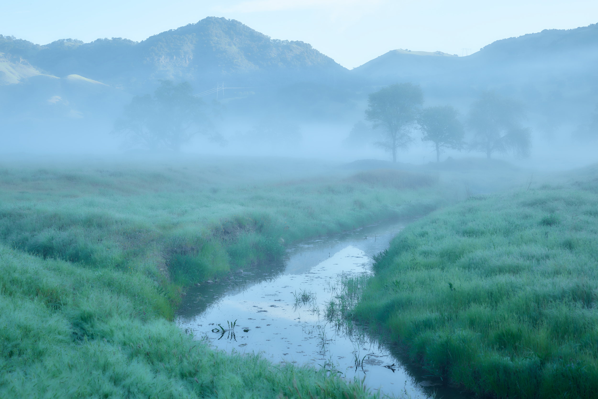 Farm Creek in Fog, Hollister, CA