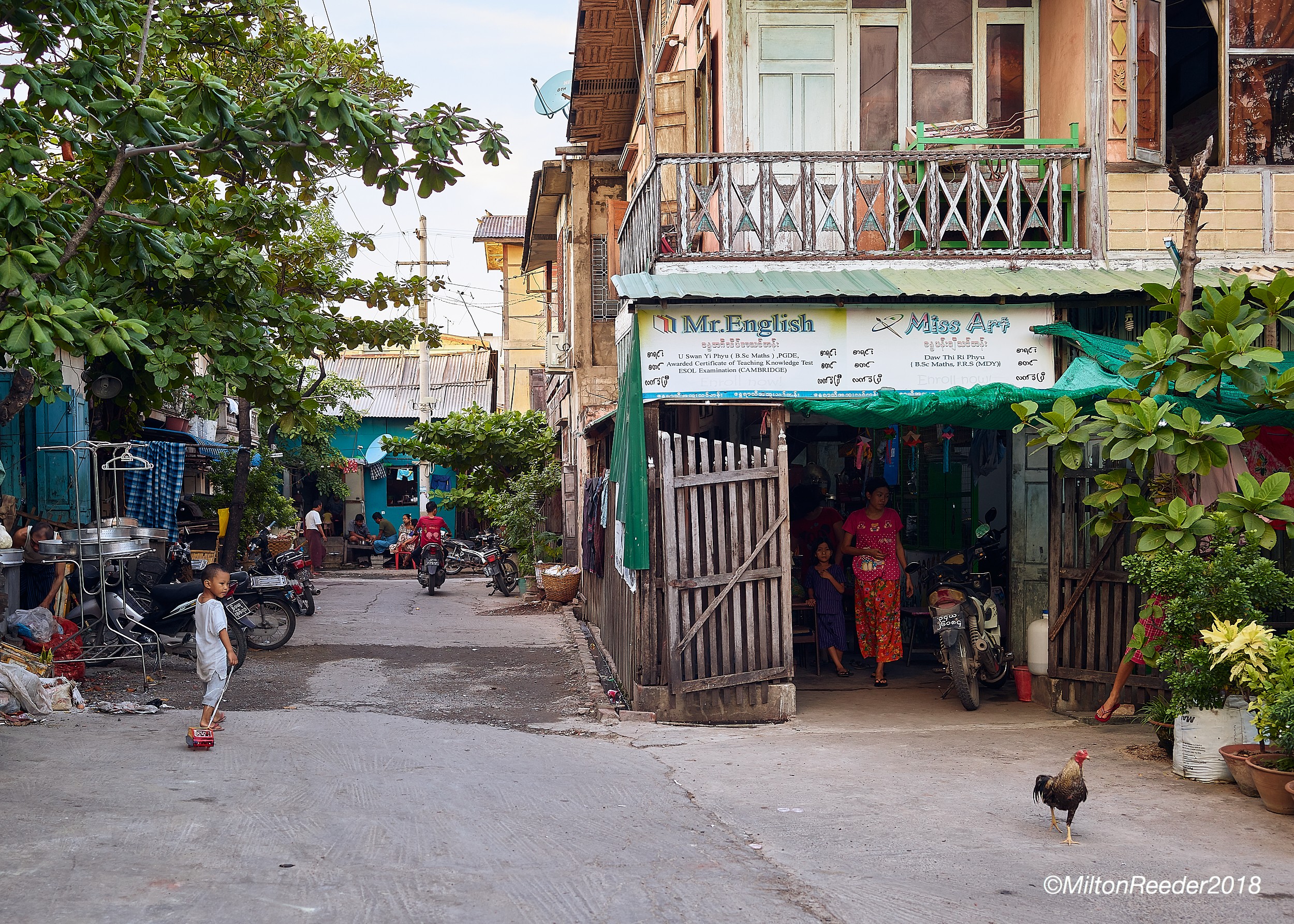 Boy and Rooster, Mandalay, Myanmar