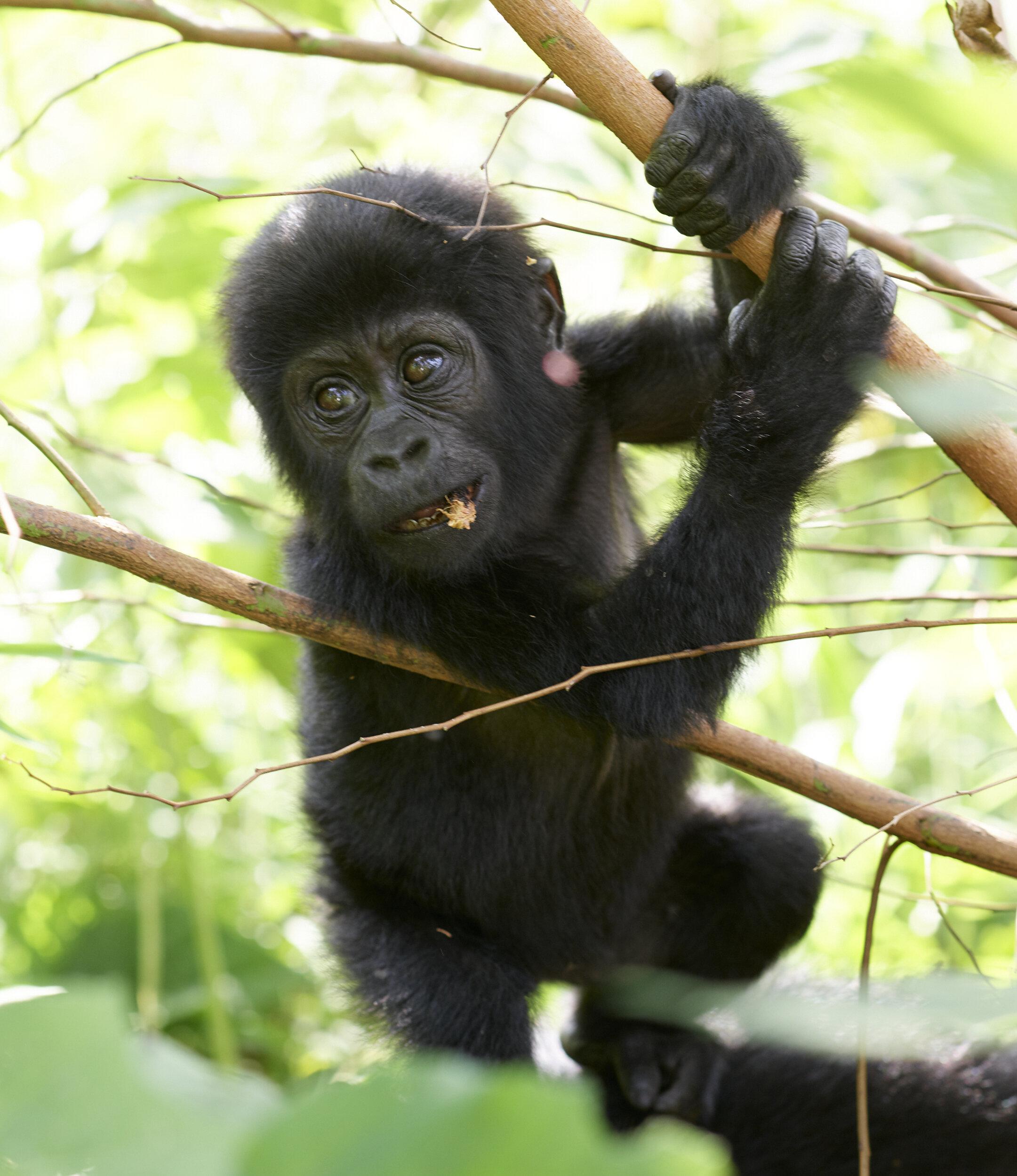 Uganda_P0001197.jpg