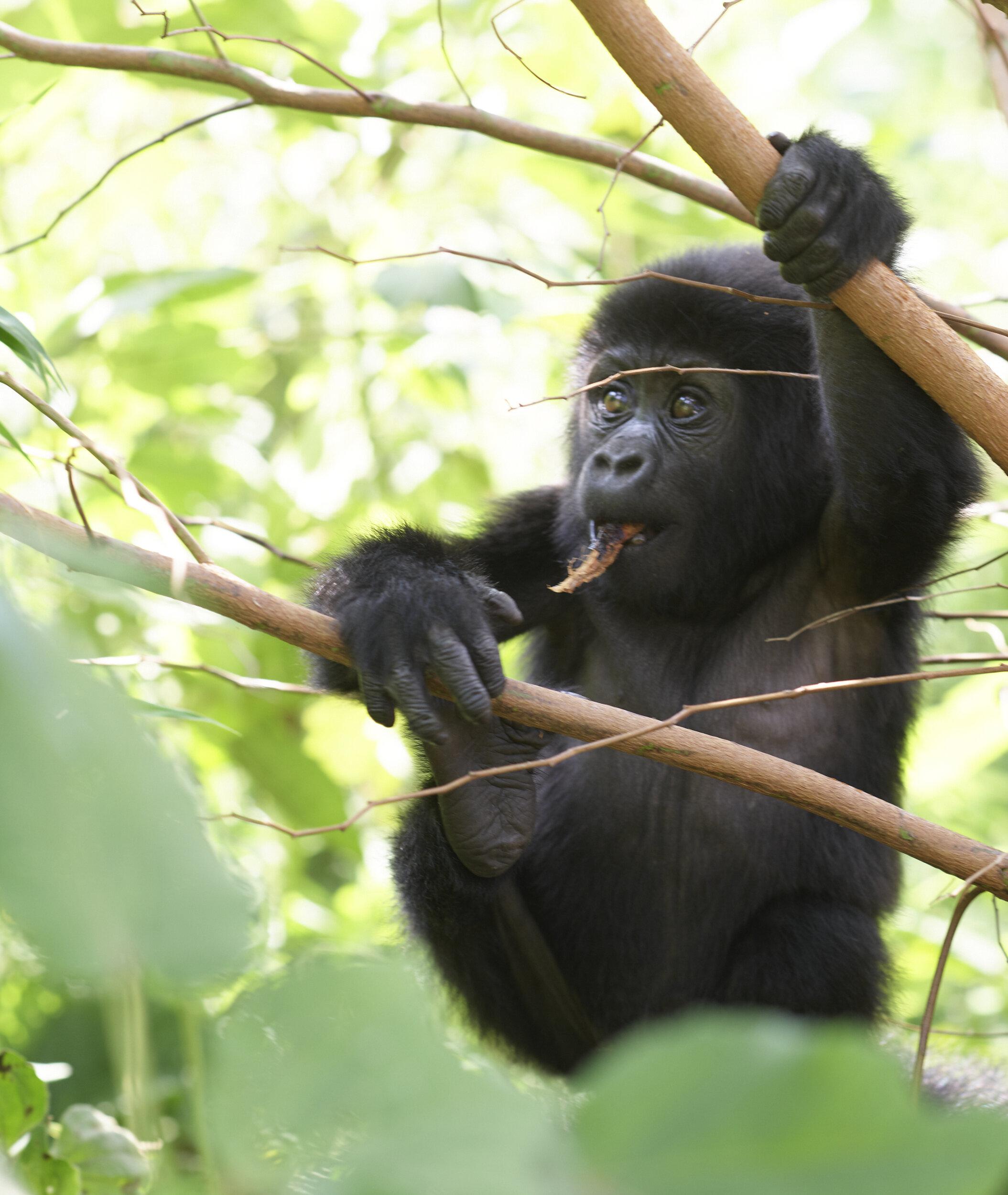 Uganda_P0001198.jpg