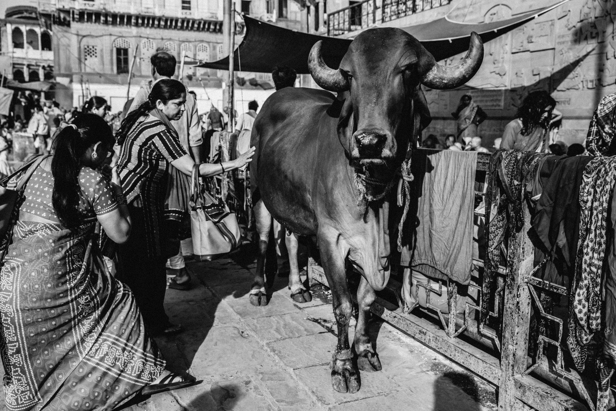 2014_03_28_DB_Varanasi_0688.jpg