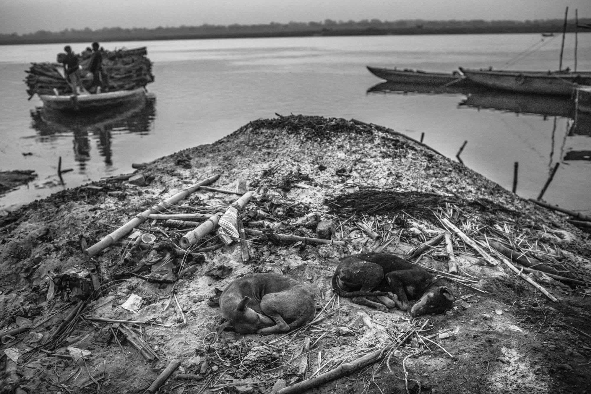 2014_03_28_DB_Varanasi_0039.jpg