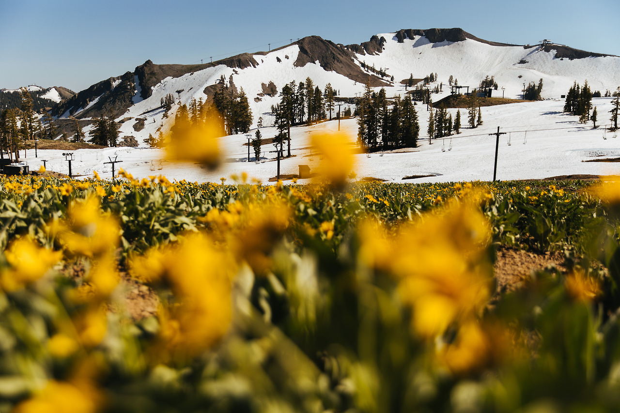 Skiing in July with Visit California