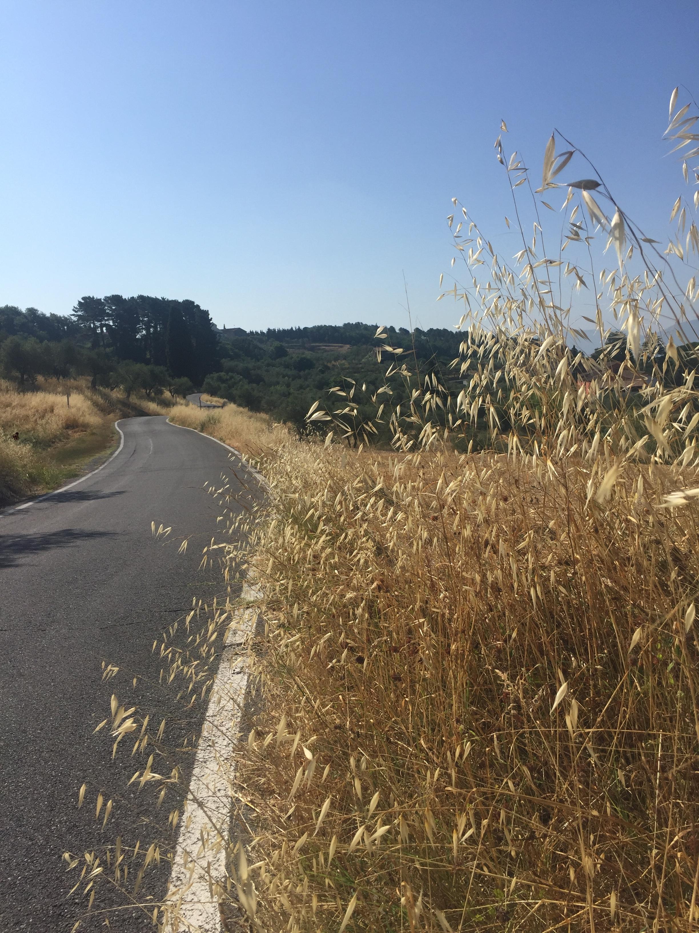 Those rolling hills…