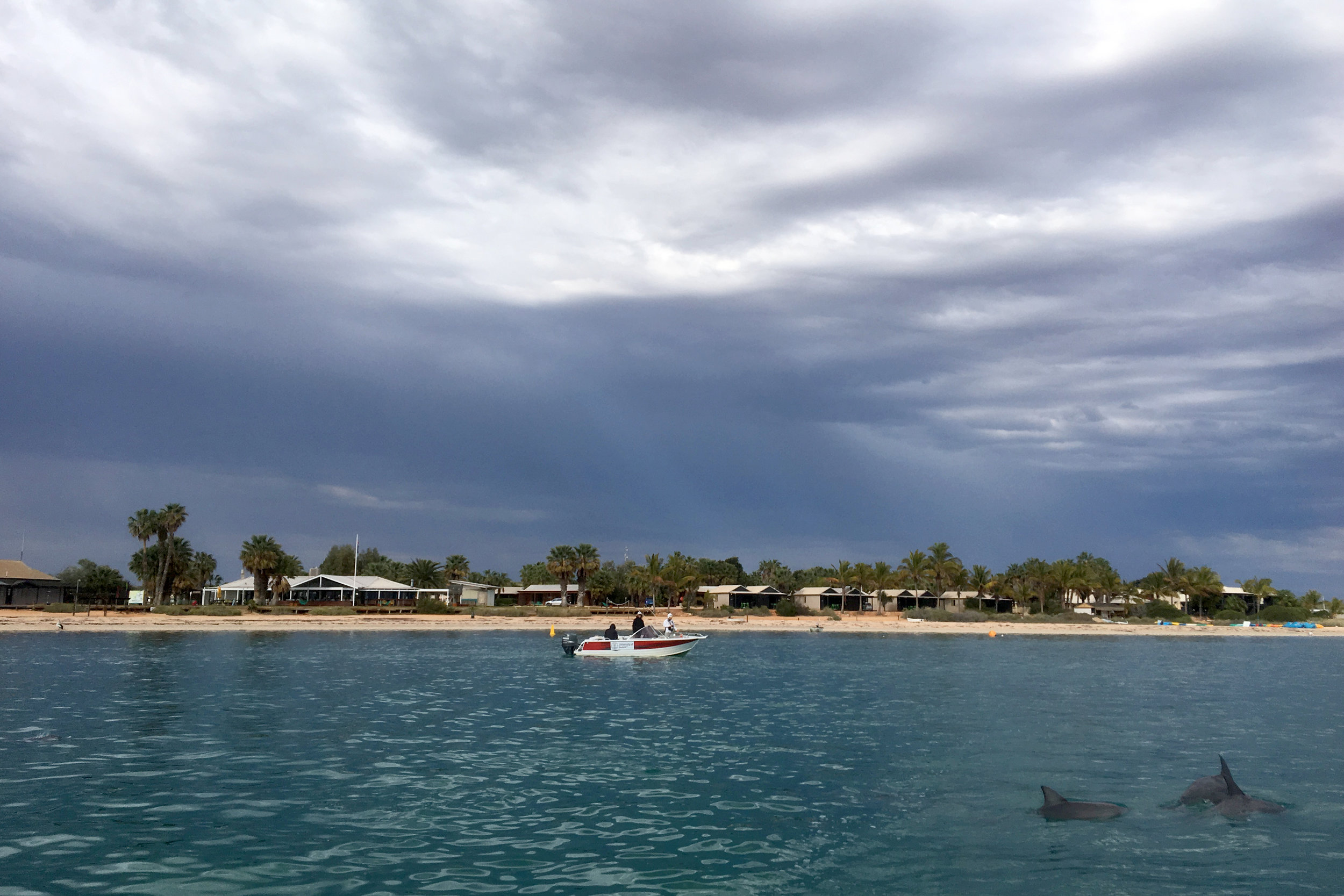 Our team leaving  Monkey Mia for a day of dolphin watching on Shark Bay  © Simon Allen
