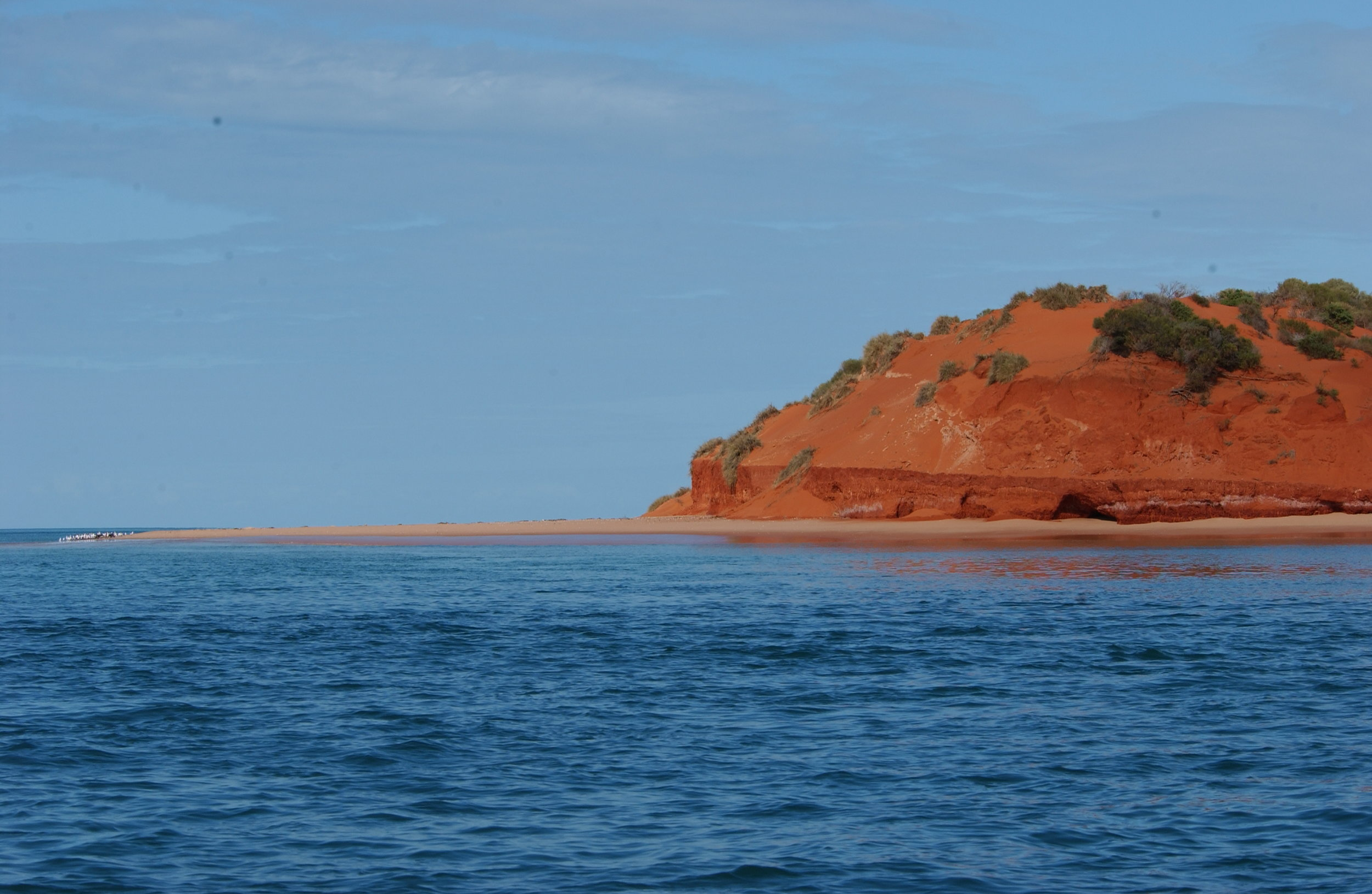 The beautiful orange bluff at Point Peron  © The Dolphin Alliance Project