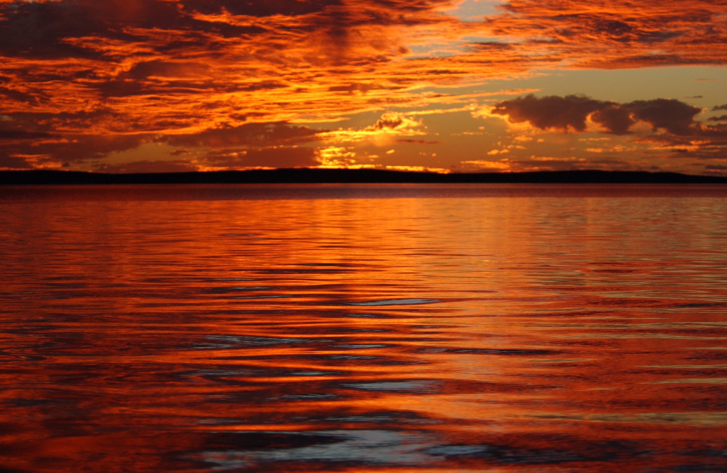 Sunset in Shark Bay © The Dolphin Alliance Project