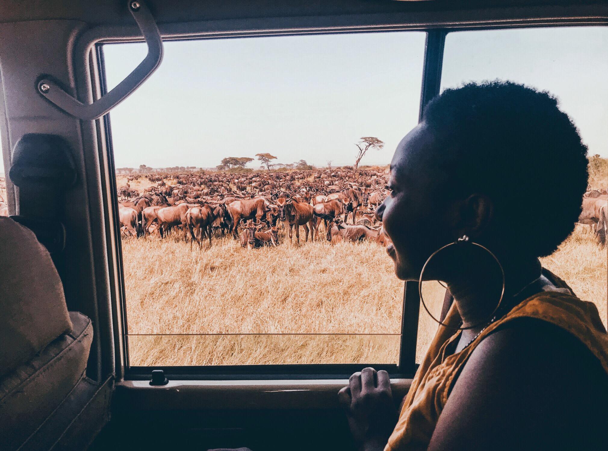 overlooking the Serengeti