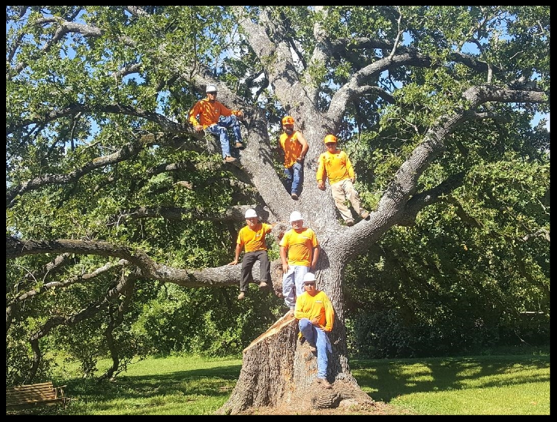 The Rothco Crew is Loyal and Dedicated to Their Craft. - We don't hire subcontractors. Period. Most of our crew has been with us since our founding in 2010 and these gentlemen are among the most experienced in their field. The team runs