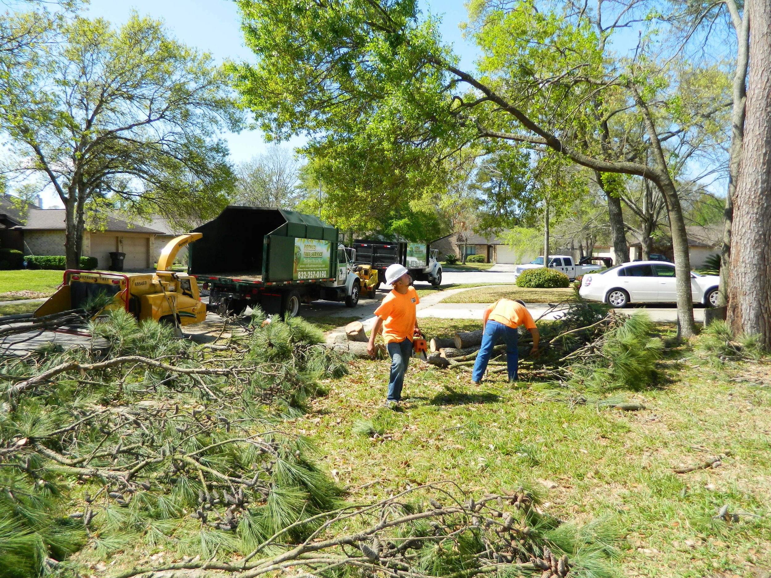 debris clean up and haul away in Spring, TX