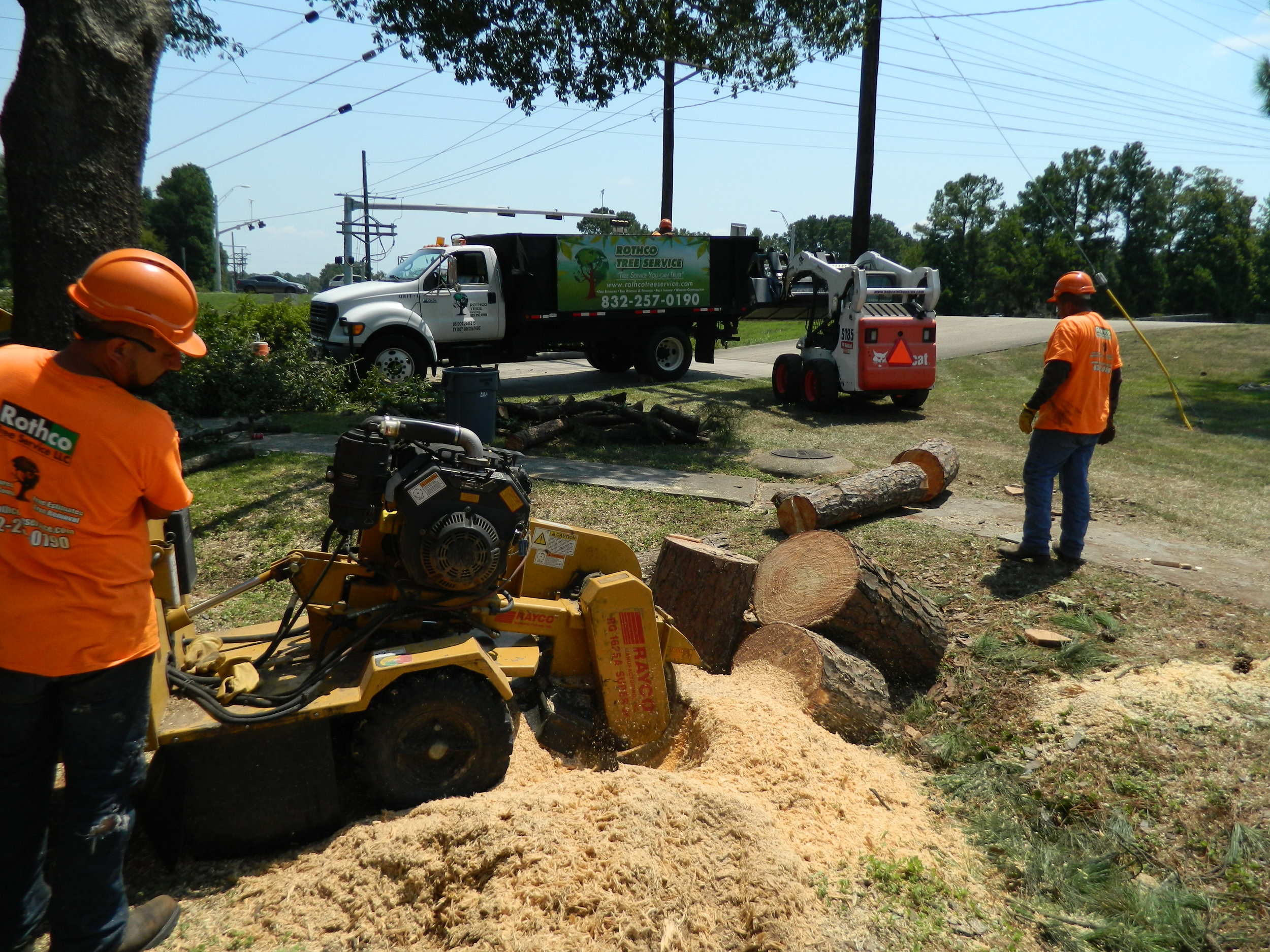 stump grinding and tree removals at mongtomery fire station