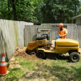Stump Grind and Rootball Shaving   After a tree is removed you may not want that stump in your yard, our equipment will allow us to grind that stump below ground level or totally remove it to enhance the appearance of your property.