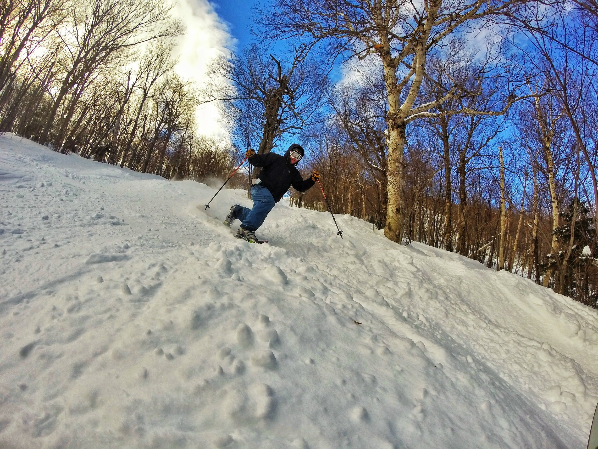 The Best Ski Resorts in the East for Skiing Trees