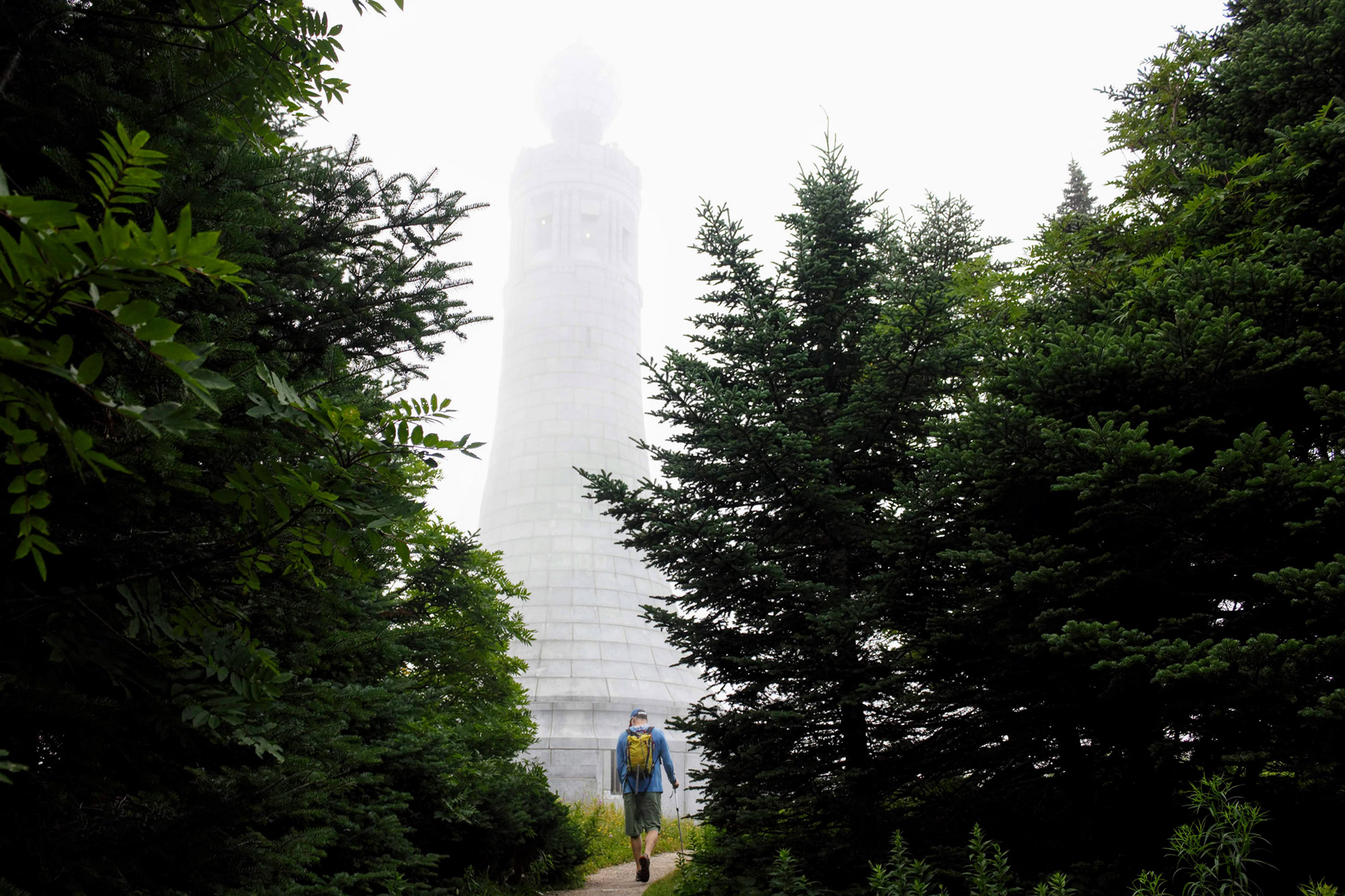 Alpha Guide: Mount Greylock's Thunderbolt Trail