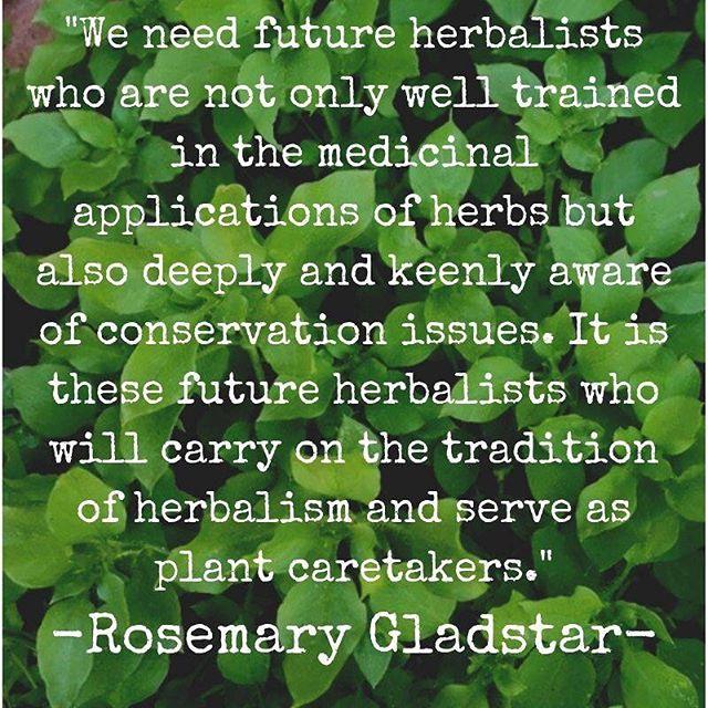 Amen 🙏🏻 #herbalism #conservation #stewardship #plantcaretakers #herbalists #rosemarygladstar #plantmedicine #wisewomen