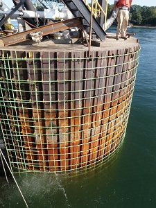 Epoxy coated rebar cage installed