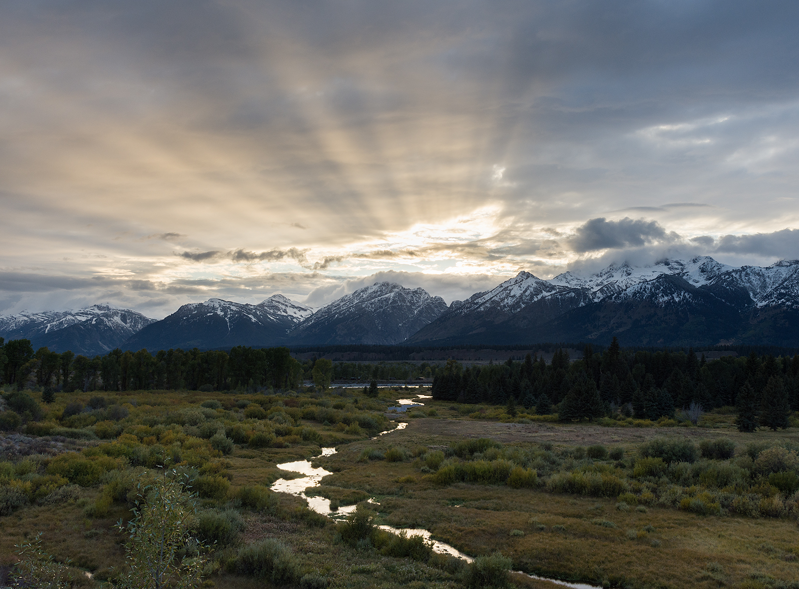 Teton Beams