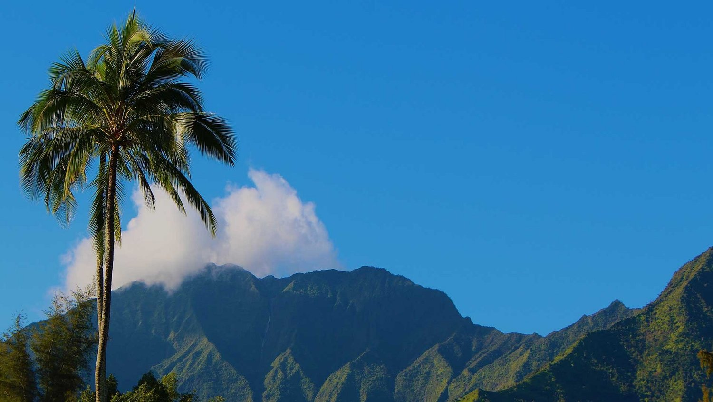 250 Hour Hot Yoga Teacher Training In Kauai Hawaii