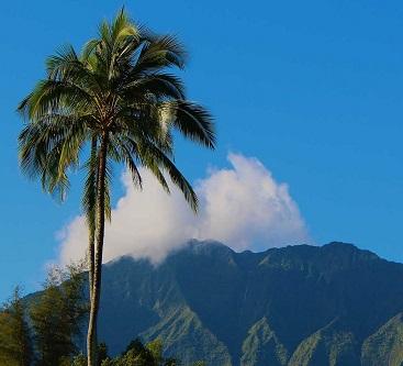 hot-yoga-teacher-training-with-evolation-yoga-in-kauai-hawaii.jpg