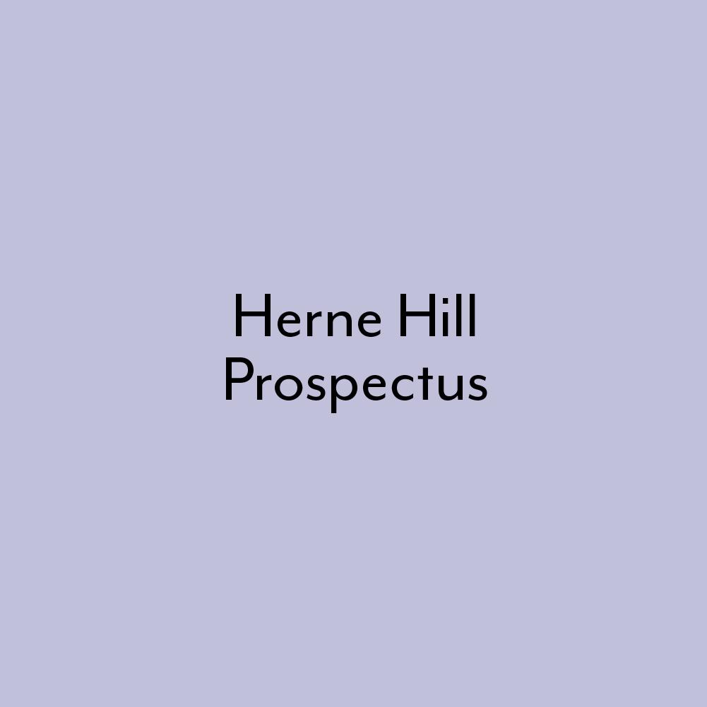 THEGERMANKINDERGARTEN-HH-prospectus.jpg