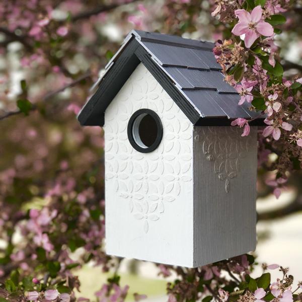 Birds Farmhouse 1.jpg
