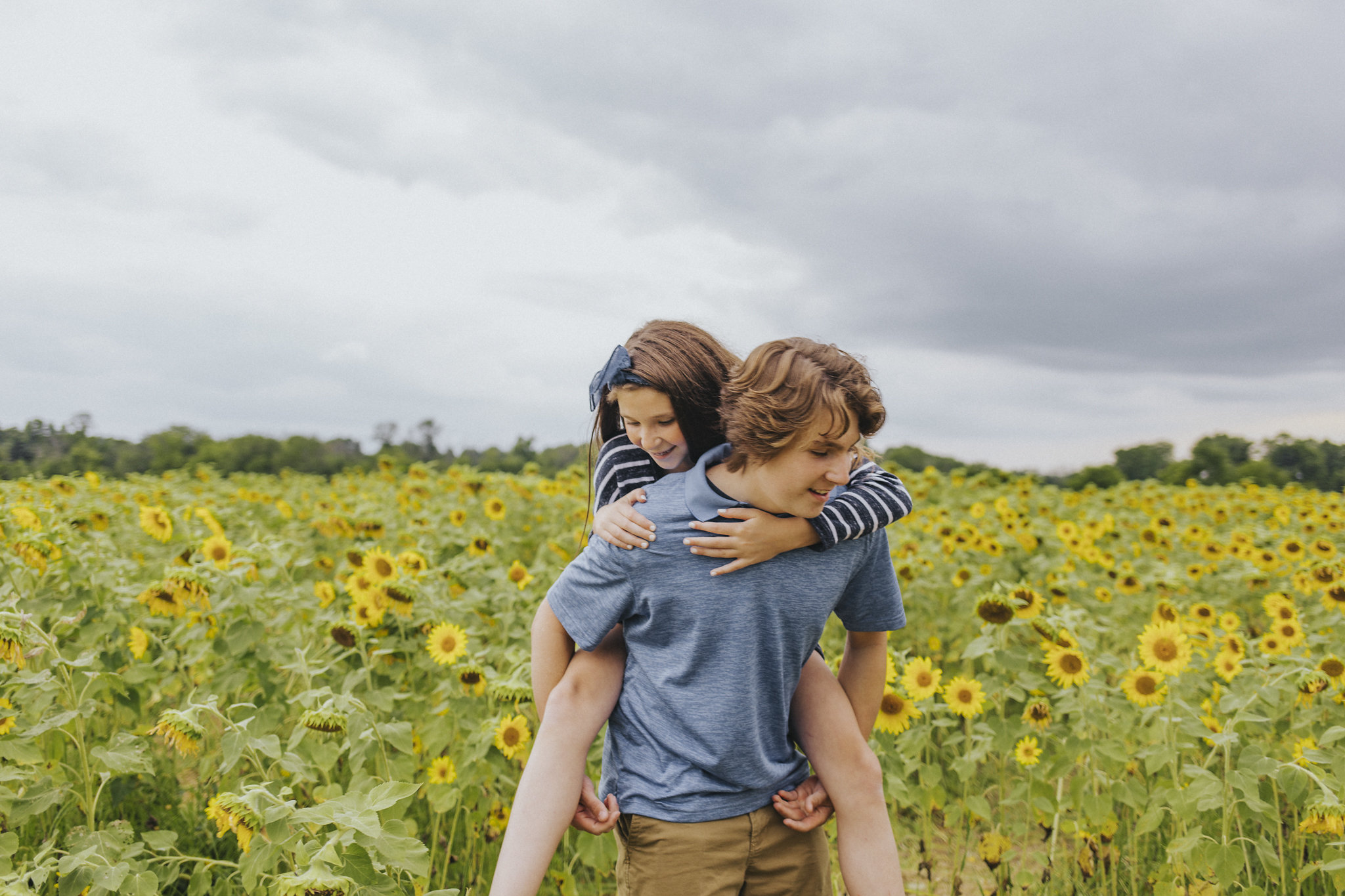 sunflower photography at Cottell Park in Mason Ohio // Cincinnati Family Photography