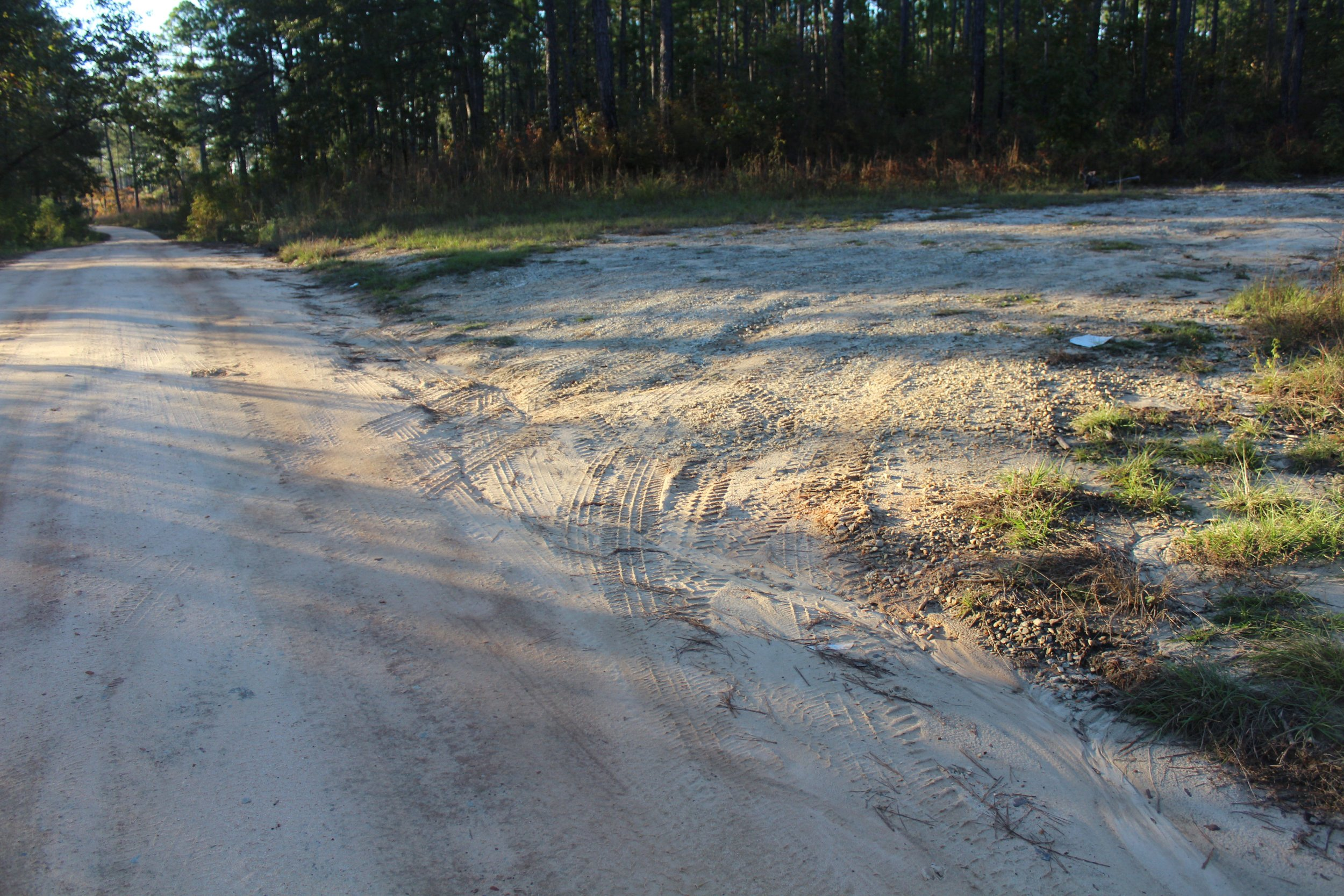 Clear evidence of a well used trailhead.