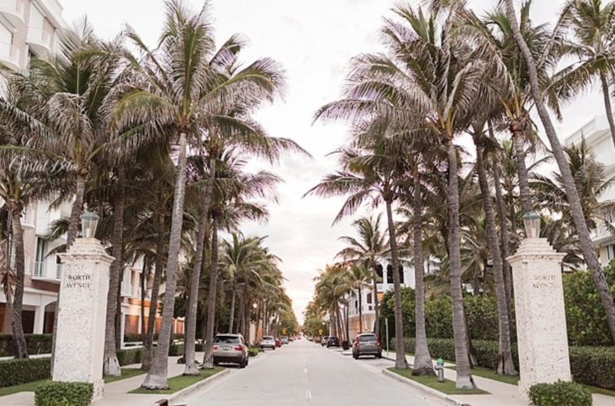 WORTH AVENUE - You have to window shop on Worth Ave. It's the Rodeo Drive of Florida. People watch as you shop and get New York street style inspo without the city smog. Bonus: if you're skipping white Christmas, Worth Ave has a stellar tropical holiday tree that will make you happy you skipped the snow.