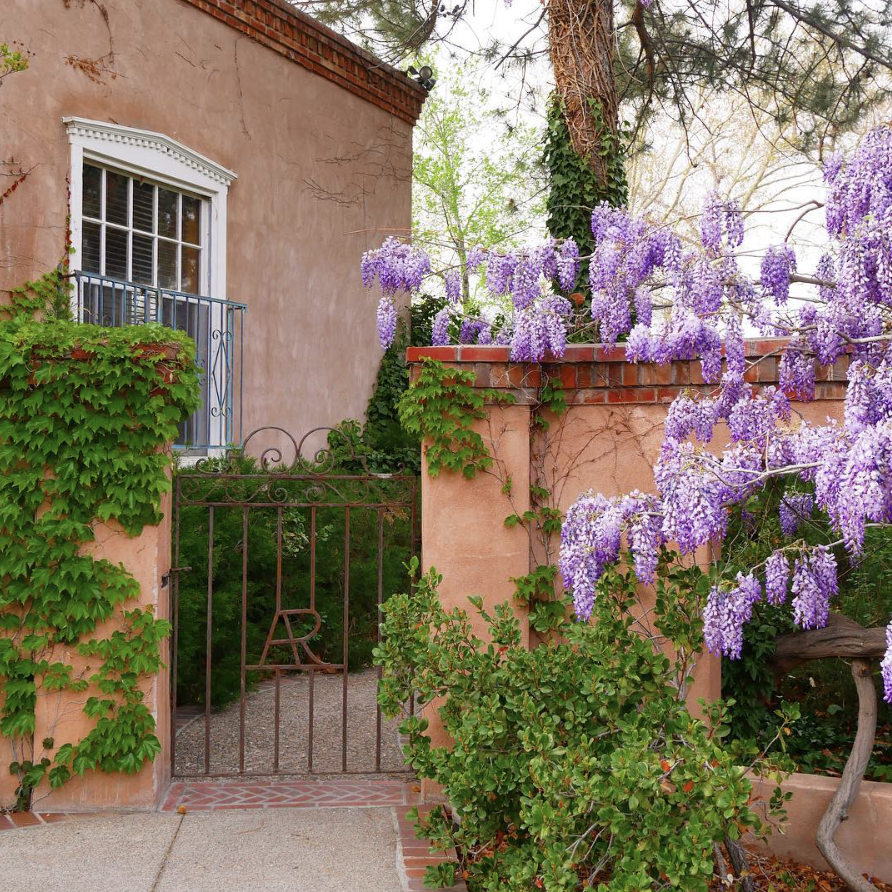 LOS POBLANOS - Just a few miles outside of Albuquerque, on a LAVENDER farm!!! Talk about aromatherapy. The scents were matched with clean white stucco and exposed wood beams. It feels like America's version of Provence. The inn is secluded, but you won't want to leave - the farm to table food is amazing and the grounds are so soothing - stay in and recharge.