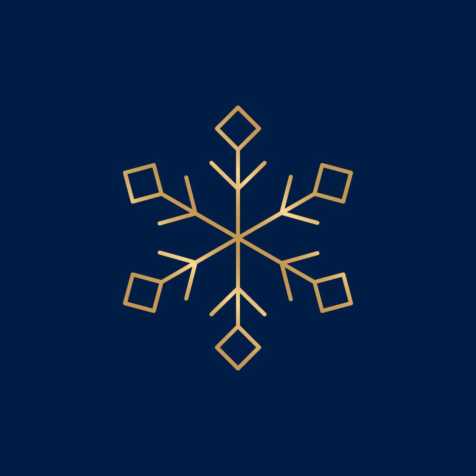 IG_snowflake Crop square.jpg