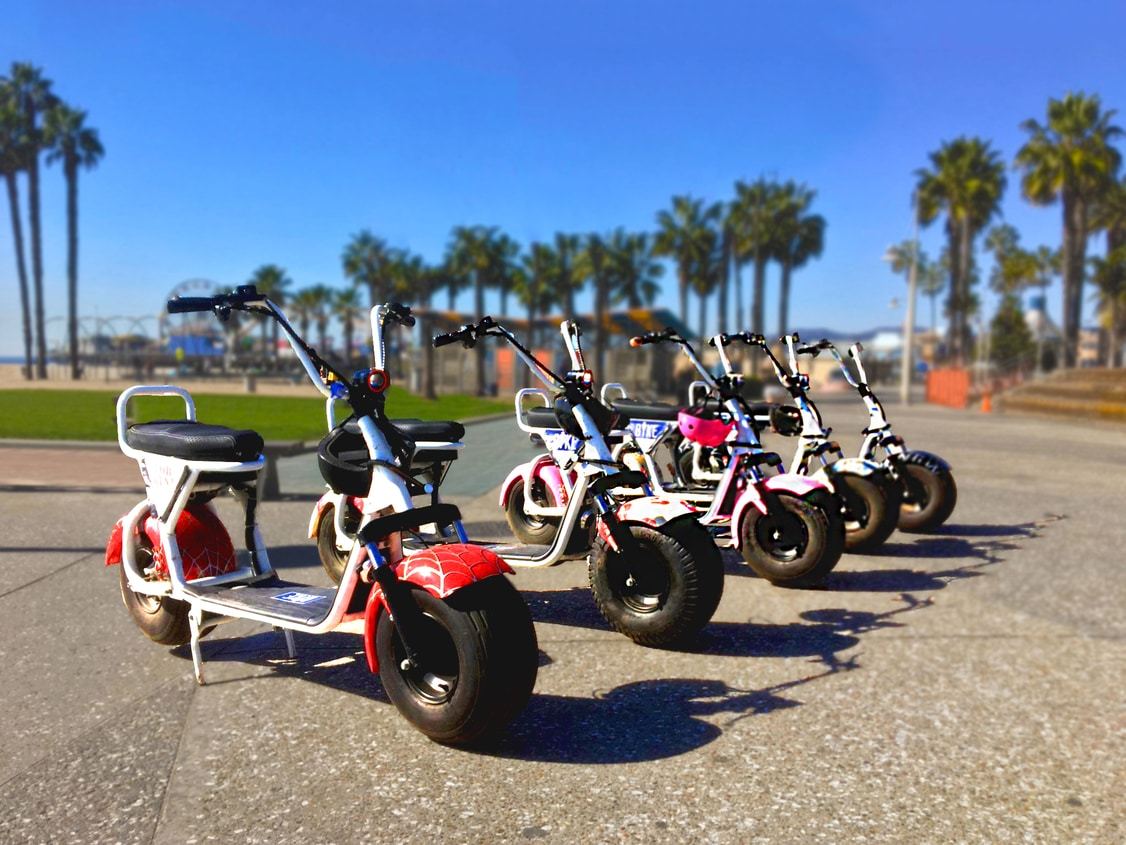 Phat Scooter Rental